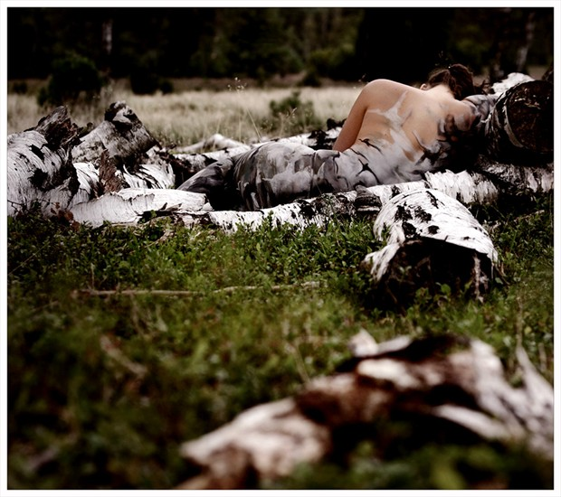 [snuggness of the woods] Nature Photo by Photographer Laila Pregizer